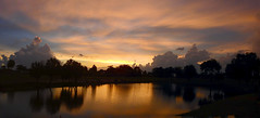Sunset July 12, 2016 (Jim Mullhaupt) Tags: sunset sundown dusk sun evening endofday sky clouds color red gold orange pink yellow blue tree palm silhouette weather tropical exotic wallpaper landscape nikon coolpix p900 pond lake water reflection bradenton florida jimmullhaupt cloudsstormssunsetssunrises photo flickr geographic picture pictures camera snapshot photography nikoncoolpixp900 nikonp900 coolpixp900