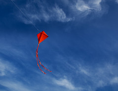 flight (Robert Couse-Baker) Tags: blue sky orange kite wind air tail nitrogen