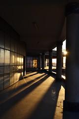 Shadows, Light and Reflections! (Adel Esmael) Tags: city sunset shadow reflection building lights nikon warm column libya benghazi d3100