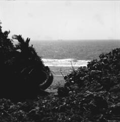 (ari@098) Tags: sea blackandwhite monochrome mediumformat ship d76 hasselblad fujifilm okinawa 120mm acros 500cm carlzeiss 66 selfdevelopment itoman planart