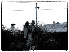 beyond the brick wall (daniel.stark) Tags: friedhof cemetery graveyard wall angel budapest churchyard engel mauer