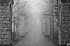 Fog on the road !! [EXPLORE] (Riccardo Brig Casarico) Tags: fog wow cab taxi nebbia atmosfera brig riki camminare atmosphre brigrc