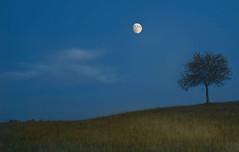 Moon over the Bashang Grassland--China (ngchongkin) Tags: china moon grassland centralasiachinathesilkroad