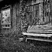 #315 Usedom_20110917_DSC4460-Bearbeitet-2