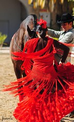 Dancer (Firesmile) Tags: horses espaa horse art animal golf caballo caballos andaluca spain arte f