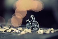 bicycle ( Explore ) (Rehab Saleh || ) Tags: