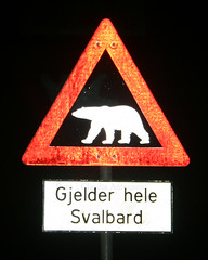 Longyearbyen. (ClaudiAnton) Tags: svalbard artic artico longyearbyen nordpolen isbjrn polonorte