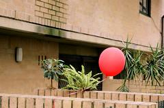 A tired balloon in a tired looking street (Cecilia Temperli) Tags: film minolta kodak minoltax700 redballoon pottspoint broughamstreet kodakportra160nc australianswsydney
