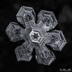 Fractal Geometry in Snowflakes (Don Komarechka) Tags: snowflake winter snow cold macro ice canon silver real blackwhite crystal geometry plate reflective hexagon fractal 61 mpe focusstack donkom