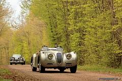 Jaguar XK120 - Tour Auto 2012 - Domet.P/Domet.B (Pessou21000) Tags: jaguar tao xk xk120 tourauto peterauto tourautooptic2000 tourauto2012 tourautooptic20002012