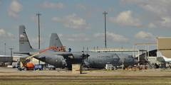 18149 AMARG Boneyard - C-130's (hogan3774) Tags: arizona plane airplane tucson aircraft military airforce usaf boneyard afb davismonthan amarc
