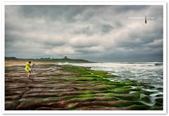 Laomei Green Reef ,Taiwan (TOONMAN_blchin) Tags: taiwan taipei 台灣 老梅石槽 toonman mygearandme mygearandmepremium mygearandmebronze mygearandmesilver mygearandmegold mygearandmeplatinum mygearandmediamond laomeigreenreef photographyforrecreation