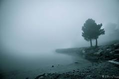 Paysage-Corse-Tenebres-Lac (NoSound Photography) Tags: lake water montagne landscape nikon eau corse lac frog zen paysage foret brouillard brume lockness ambiance tenebre d90 nosoundphotography