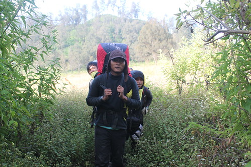 "Pendakian Sakuntala Gunung Argopuro Juni 2014 • <a style=""font-size:0.8em;"" href=""http://www.flickr.com/photos/24767572@N00/26557300473/"" target=""_blank"">View on Flickr</a>"