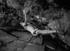 Lou Ferrino (C Noakes) Tags: christy climb boulder climbing limestone bouldering cave connolly 7c parisellas