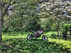 Missed the aprilia sxv so in steps a hypermotard sp (silky07) Tags: scenery supermoto motorcycle ducati hypermotard ducatihypermotard ducatihypermotardsp 821hyper