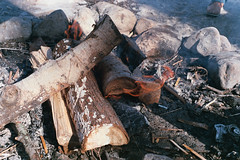 Fire (nroclaniffirg) Tags: spring maple fuji quebec superia sugar 400 fujifilm shack xtra