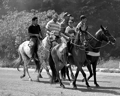 Sunday morning ride (Helvio Silva) Tags: family friends horses bw amigos nature familia brasil cowboys natureza group pb grupo cavalos pretoebranco passeio paraiba cavaleiros helviosilva monochromme