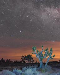 New Moon June 2016 #14 (MarcCooper_1950) Tags: sky skyscape stars landscape outside outdoors nikon scenery moody desert dramatic astrophotography nightsky hdr lightroom milkyway starlight longeposure d810 desertnight marccooper aurorahdr