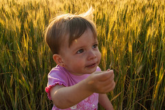 Blano (tamstth) Tags: portrait people baby color nature canon children photography photo twins colorful child daughter photoraphy acre