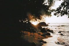 untitled. (rwed) Tags: ocean travel film latinamerica analog trekking 35mm de mar costarica corcovado t5 drake isla yashica osa centralamerica baha mochilero