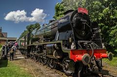 46100 - Hardingham, MNR - Reunion Steam Gala - 24.06.2016(3) (Tom Watson 70013) Tags: mnr railway steam gala train locomotive 46100 royal scot class rebuilt hardingham station run passed past fly mid norfolk