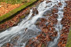 Smoked Waterfall Anyone? (ChrisRTonks) Tags: autumn water outdoors nikon waterfalls smokey watersedge