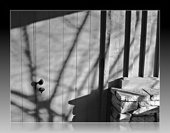 Garrison Forest - shadows on the Chapel door (karma (Karen)) Tags: light texture buildings doors shadows stonework maryland chapels shadowplay owingsmills garrisonforest baltimoreco cmwdbw