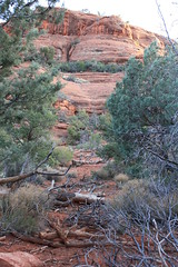 IMG_0933 (irishngerman) Tags: sedona morninghike margsdraw