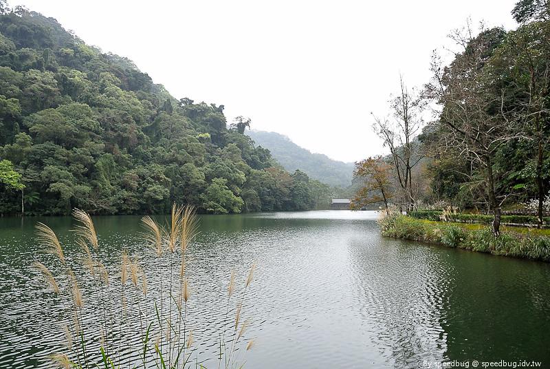 後慈湖 (47)
