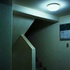 bulletin (akira ASKR) Tags: longexposure night fuji hasselblad okinawa  naha provia provia100f planar  hasselblad500cm   rdpiii planarcf80mm ishimine
