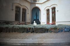 , (Benedetta Falugi) Tags: film analog trieste 22mm castellodimiramare eximus benedettafalugi wwwbenedettafalugicom