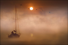 Sailing Away (adrians_art) Tags: mist water birds fog sunrise reflections boats golden sailing gulls yachts riverthames