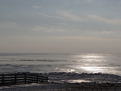 DSC02524 (hoekiepoekie) Tags: wintertime ijsselmeerkust