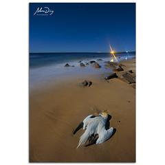 Death at the beach (alonsodr) Tags: longexposure nightphotography seascape night marina noche andaluca nocturnal sony paisaje nocturna alpha cdiz alonso tarifa carlzeiss largaexposicin a900 alonsodr fotografanocturna alonsodaz alpha900 cz1635mm