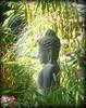 ~~Garden of PEACE #8~~ (TravelsThruTheUniverse) Tags: zengardens gardenstatuary earlymarch californiagardens buddhastatuary