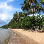 "Rabbit Island Beach <a style=""margin-left:10px; font-size:0.8em;"" href=""http://www.flickr.com/photos/14315427@N00/6969014874/"" target=""_blank"">@flickr</a>"