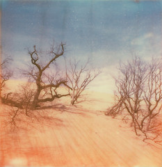 summit | march 11. 2012 (a midwest girl) Tags: film beach analog sx70 sand dunes analogue mtbaldy indianadunesnationallakeshore polaroidsx70 instantfilm usnationalparkservice theimpossibleproject px70colorshade
