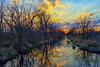 Le Grande Canal (Kansas Poetry (Patrick)) Tags: lawrencekansas bakerwetlands wakarusawetlands patrickemerson patricknancysearchforaluminum