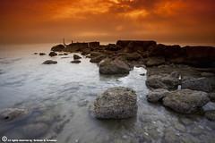 The Orange Day (ibrahem N. ALNassar) Tags: canon eos mark n ii 5d kuwait usm ef 1740mm f4 ابراهيم الكويت كويت alnassar كانون ibrahem النصار نصار