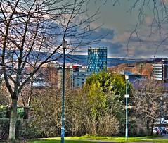 Urban Nature (Richard Cartawick) Tags: urban skyline sheffield skylines urbannature sheffieldskyline iquarter