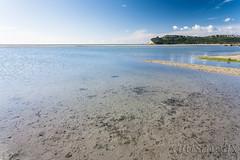 La spiaggia del Poetto ... a mollo (giusmelix) Tags: canon eos 1ds mkii 1dsmarkii cagliarispiaggiapoettobeachmareggiatasardegnasardinia