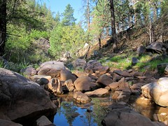 Gordon Canyon (zoniedude1) Tags: arizona southwest nature water creek forest woodland outdoors spring canyon greenery reflectingpool exploration discovery streambed riparian tontonationalforest gilacounty 5700feetelevation zoniedude1 canonpowershotg11 earthnaturelife gordoncanyon gordoncanyonexpedition2012