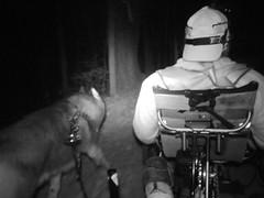 The ZMan (Zarro) MUSHing The Night