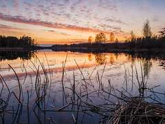 IMG_3316_1080h (cls-70) Tags: sunset lake reflection reed clouds hdr solnedgng sj moln vass oskarshamn spegling smlten
