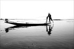 Fishing (*Kicki*) Tags: lake man reflection water hat person 50mm boat fisherman burma horizon canoe myanmar inlelake inle shanstate fishingnet legrowing