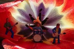4W0B1218 Open Air Festival ;-) (Brigitte Wagner) Tags: music macro festival canon miniature concert band tulip openair tulpe macrolens macrography miniaturepeoplephotography