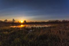 Early Riser (hey its k) Tags: ca york sky sun mist ontario canada nature sunrise pond caledonia img0119e