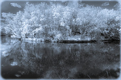 infrared, Minneapolis lake (goodrich781) Tags: blue lake art canon backyard contemporary minneapolis surreal manipulation infrared