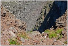 DSC_0235 (tonydg57) Tags: del torre campania napoli vesuvio vulcano pompei ercolano greco